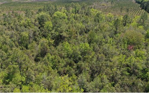 Photo of CAMP P RD, Madison, FL 32340 (MLS # 110657)
