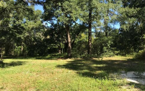 Photo of 238 NW NORTH STREET, Mayo, FL 32066 (MLS # 105660)