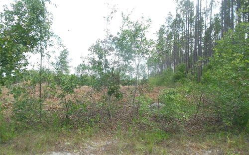 Photo of TBD SW 52ND TERRACE, Jasper, FL 32052 (MLS # 109667)