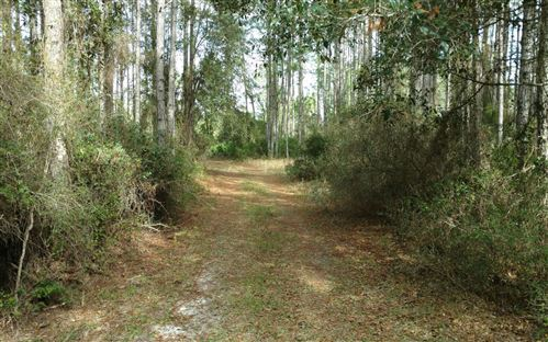 Photo of SW GARY L. THOMAS RD., Mayo, FL 32066 (MLS # 106679)