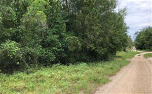 Photo of 103RD DRIVE, OBrien, FL 32074 (MLS # 104680)