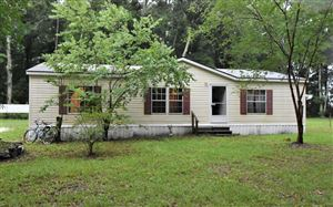 Photo of 20680 119TH, OBrien, FL 32071 (MLS # 104695)
