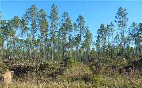 Photo of TBD N CR 51, Jasper, FL 32052 (MLS # 109696)