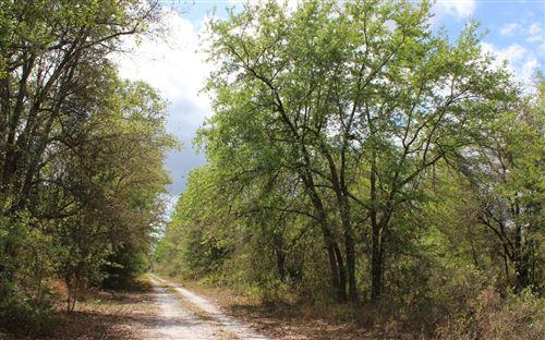 Photo of SW PINE LAKE ROAD, Lee, FL 32059 (MLS # 109702)