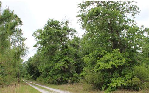 Photo of SW PINE LAKE RD, Lee, FL 32059 (MLS # 109704)