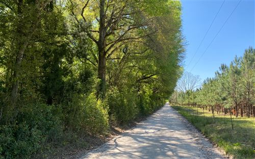 Photo of TBD 201ST RD, Live Oak, FL 32060 (MLS # 110715)