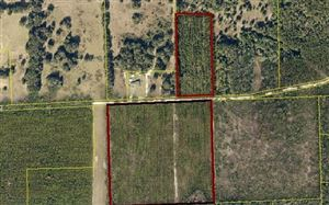 Photo of TBD SW COOK STREET, Fort White, FL 32038 (MLS # 105738)