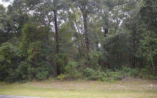 Photo of 251 SW TIMBERLAND CT, Lake City, FL 32024 (MLS # 112753)