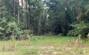 Photo of SW CUMBERLAND ST, Fort White, FL 32038 (MLS # 104758)