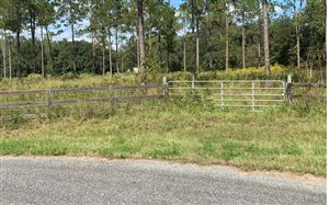 Photo of TBD SW BARON GLN, Fort White, FL 32038 (MLS # 105772)