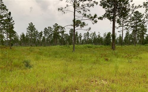 Photo of TBD SE CR 255, Lee, FL 32059 (MLS # 108778)