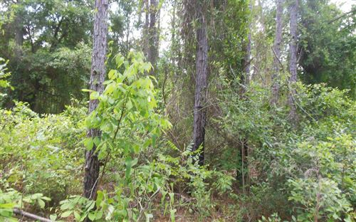 Photo of TBD NW 36TH PLACE, Jennings, FL 32053 (MLS # 107785)