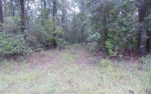 Photo of TBD NW 17TH WAY, Jasper, FL 32053 (MLS # 108804)