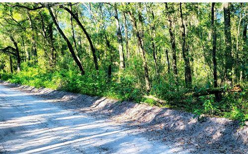 Photo of TBD NE TIGER LILY ROAD, Mayo, FL 32066 (MLS # 112809)