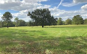 Photo of 12603 S US HIGHWAY 129, Live Oak, FL 32060 (MLS # 105811)
