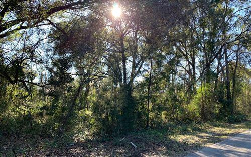 Photo of TBD SW WILSON SPRINGS RD, Fort White, FL 32038 (MLS # 106813)