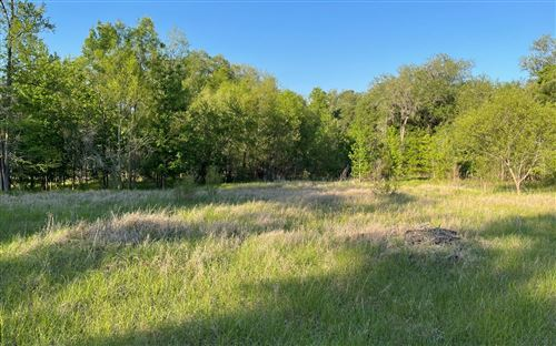 Photo of TBD 139TH DRIVE, Live Oak, FL 32060 (MLS # 110861)