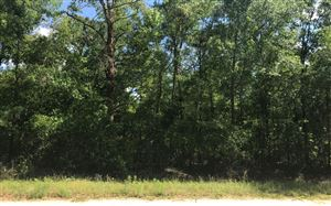 Photo of NW 24TH PLACE, Jennings, FL 32053 (MLS # 100864)