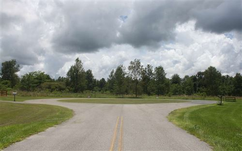 Photo of 342 SW HEALAN CT, Fort White, FL 32038 (MLS # 111875)