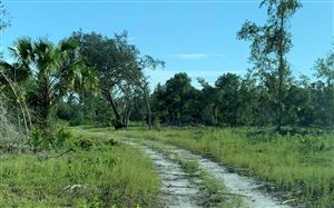Photo of SE 162ND AVENUE, Other, FL 32640 (MLS # 104898)