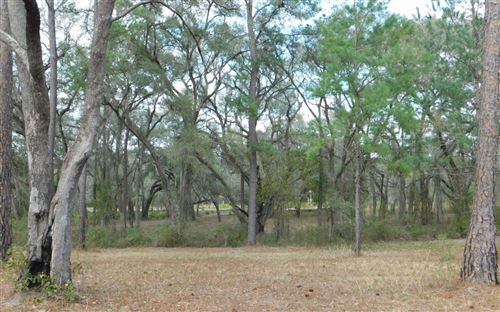 Photo of CR-137, Wellborn, FL 32094 (MLS # 106912)