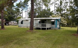 Photo of 2276 102ND TRACE, Dowling Park, FL 32064 (MLS # 104923)