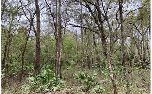 Photo of L-105 NW FOX RUN TRAIL, Mayo, FL 32066 (MLS # 110932)