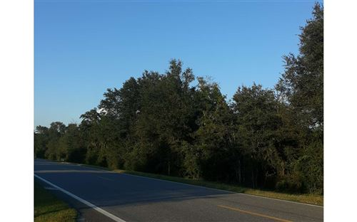 Photo of TBD N CR 53 LOT 2, Mayo, FL 32066 (MLS # 112941)