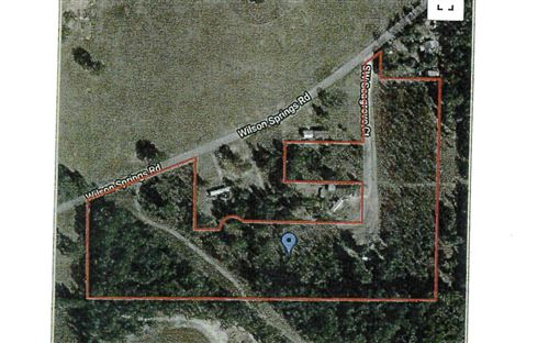 Photo of TBD WILSON SPRINGS ROAD, Fort White, FL 32038 (MLS # 109947)