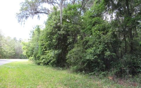 Photo of TBD SE CR 349, Lake City, FL 32055 (MLS # 100953)