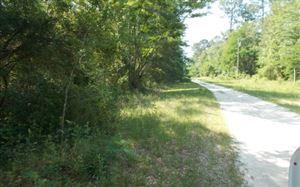 Photo of LOT38 NE CHIVE TERR, Madison, FL 32340 (MLS # 100961)
