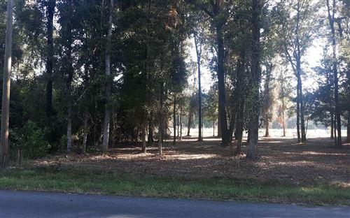 Photo of TBD SW NEWARK DRIVE, Fort White, FL 32038 (MLS # 112962)