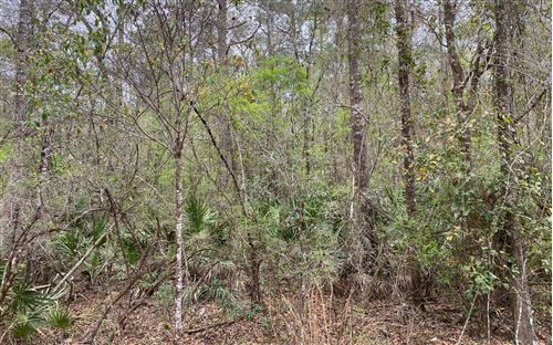 Photo of SE WILD TURKEY RD, Branford, FL 32008 (MLS # 110963)