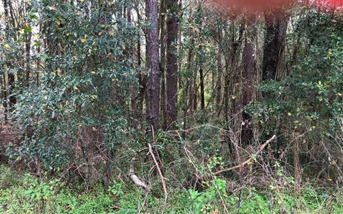 Photo of BRIARBROOK PLACE, Lake City, FL 32025 (MLS # 106966)
