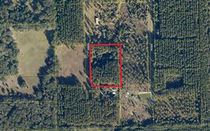 Photo of TBD 49TH ROAD, Wellborn, FL 32094 (MLS # 101970)