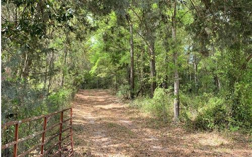 Photo of NW 50TH AVE, Bell, FL 32619 (MLS # 107973)