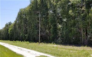 Photo of TBD 111TH DRIVE, OBrien, FL 32071 (MLS # 104974)