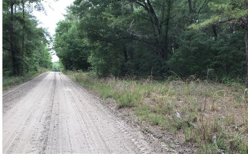 Photo of XXX 14TH TRAIL, Live Oak, FL 32060 (MLS # 110974)