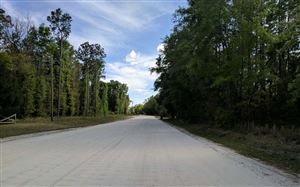 Photo of SW OLD NIBLACK AVENUE, Fort White, FL 32038 (MLS # 103986)