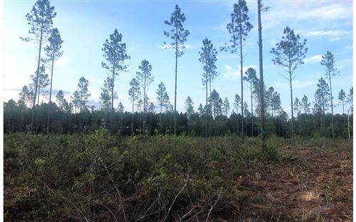 Photo of TBD SW COUNTY RD 18, Other, FL 32044 (MLS # 108992)