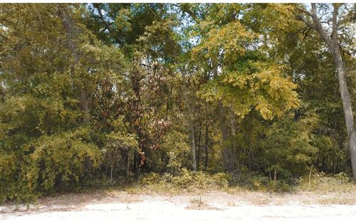 Photo of TBD 220TH PATH, OBrien, FL 32071 (MLS # 110999)