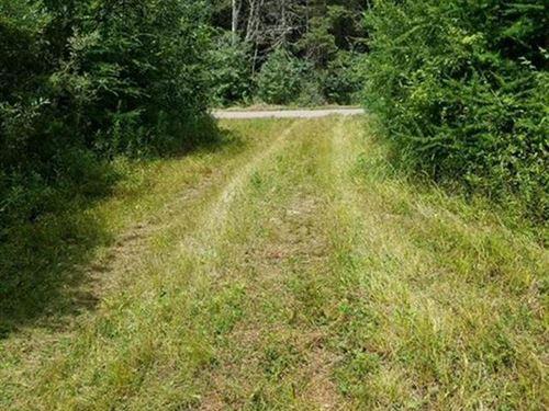 Photo of W4427 HEDIN RD, Ogema, WI 54459 (MLS # 183510)
