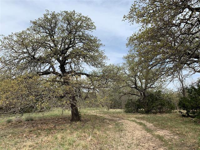 101 Private Road  4691, Baird, TX 79504 - #: 14555125