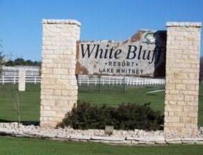43130 Mountain Sage Drive, Whitney, TX 76692 - #: 14459198
