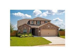 Photo of 1431 Englemann Drive, Princeton, TX 75407 (MLS # 13968212)