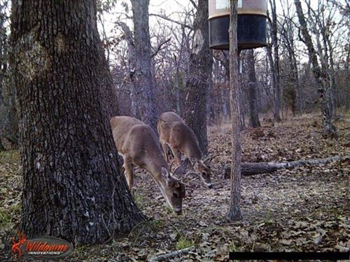 Photo of 00 CR 1658, Alba, TX 75410 (MLS # 14454306)
