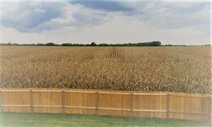 Tiny photo for 312 Magnolia Drive, Princeton, TX 75407 (MLS # 13952400)