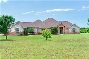 Photo of 4383 County Road 463, Princeton, TX 75407 (MLS # 14095496)