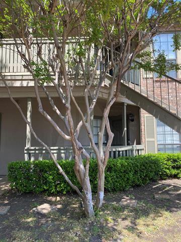 3101 Townbluff Drive #713, Plano, TX 75075 - #: 14554534