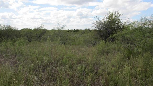TBD Private Road 196, Blum, TX 76627 - #: 14396720